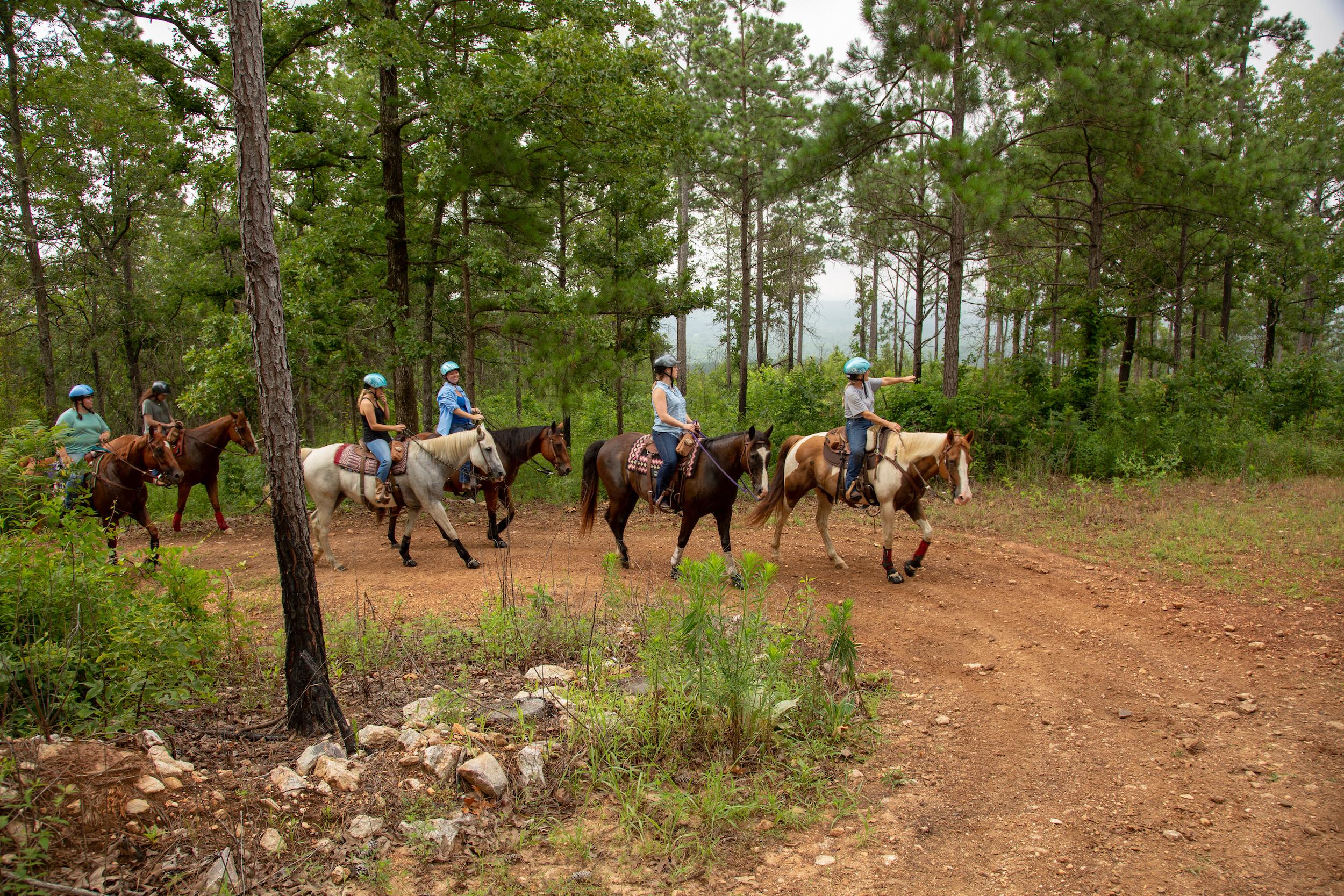 Horseback Riding at Pursell Farms.jpg