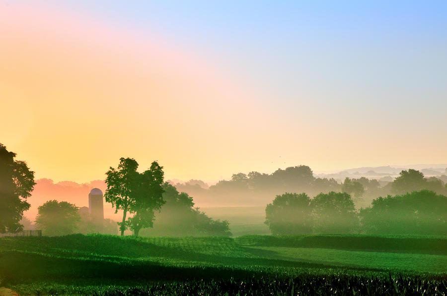 morning fog on farm.jpg