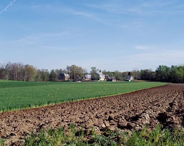 farm feild lines.jpg
