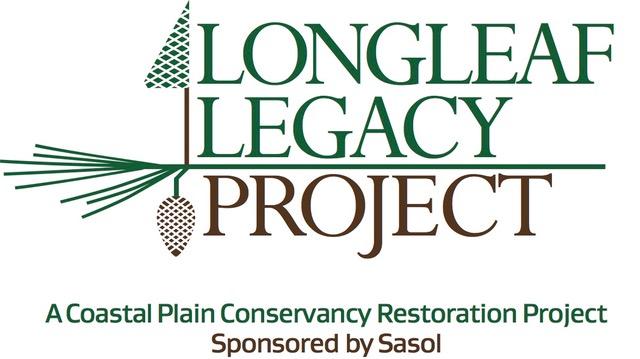 LLP tree cone logo fnl.jpeg