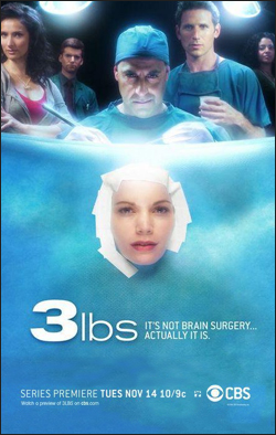 3 lbs.   Producer: The Levinson/Fontana Co. Creator: Peter Ocko Network: CBS Starring: Mark Feuerstein, Armando Riesco, Stanley Tucci