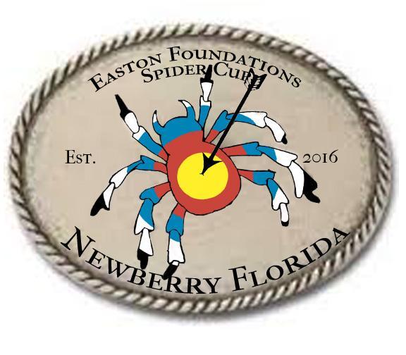 spider cup logo