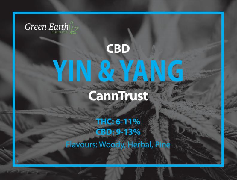Yin & Yang.PNG
