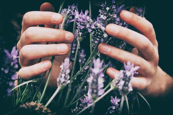 hand with lavernder - vero-photoart-140937-unsplash.jpg