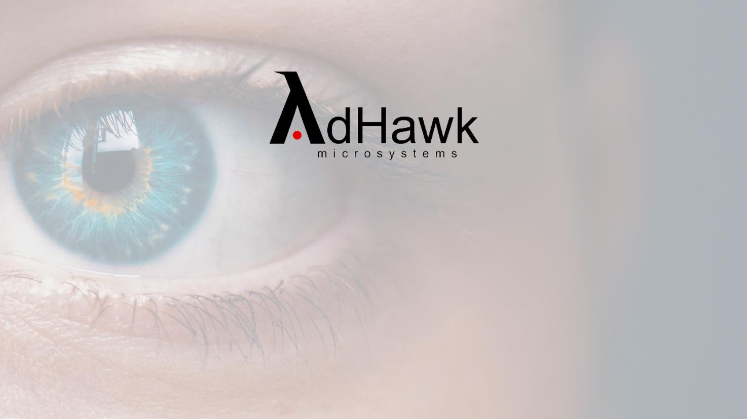 adhawk.PNG