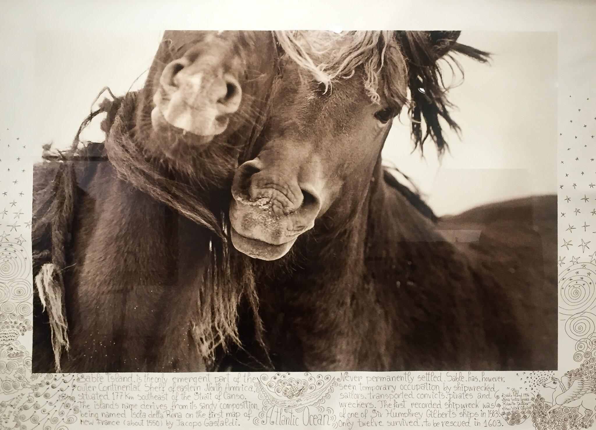 "Play, 1994-2015. Silver gelatin print. 43 x 60""."