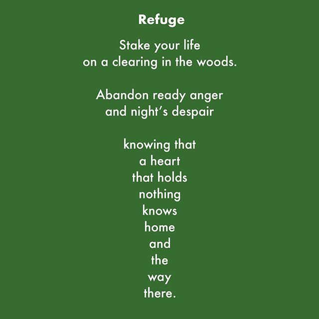#newpoetry #dharma #refuge #love #lovepoetry