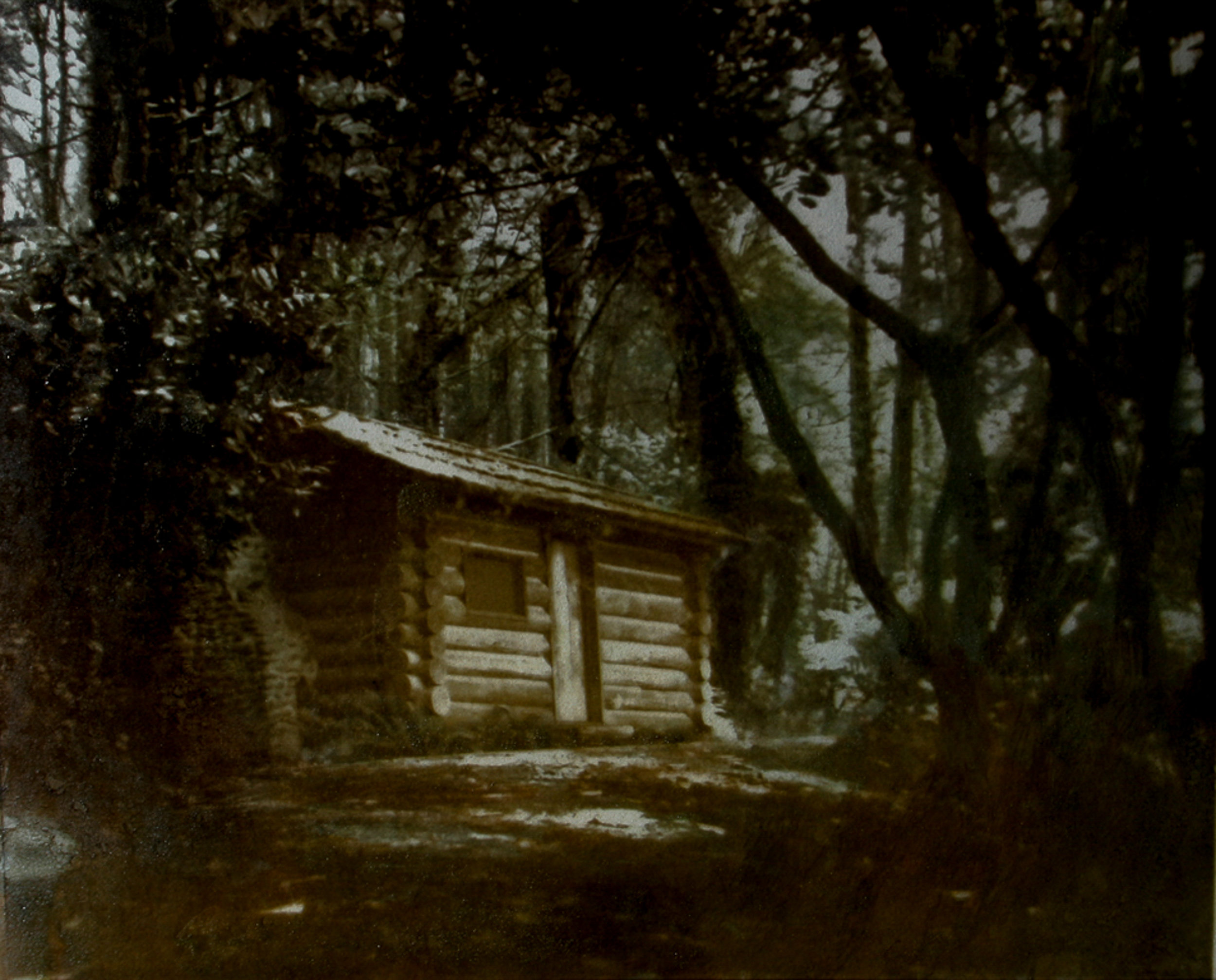 Skinner's Cabin
