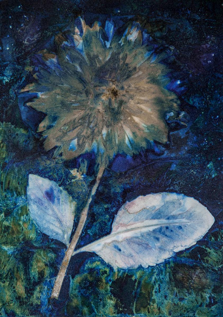 van Gogh's Dahlia