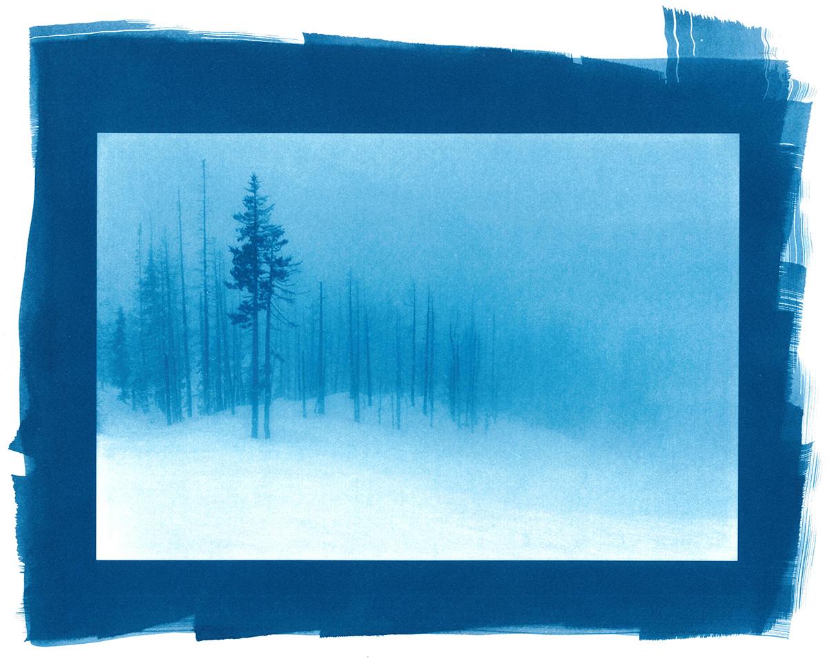 The Blue Fog of Burnout