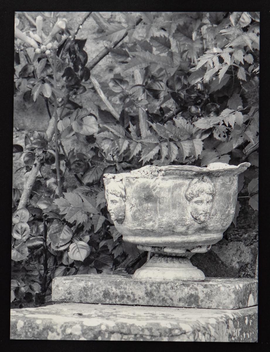 Pashley Manor Vase #2