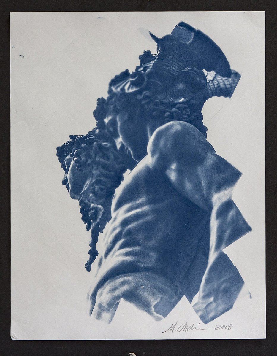"""Maxine Chelini  Cyanotype  """"Images range between 11 - 14 inches on the long side""""  NFS  chelini_maxine_2, entry #1068"""