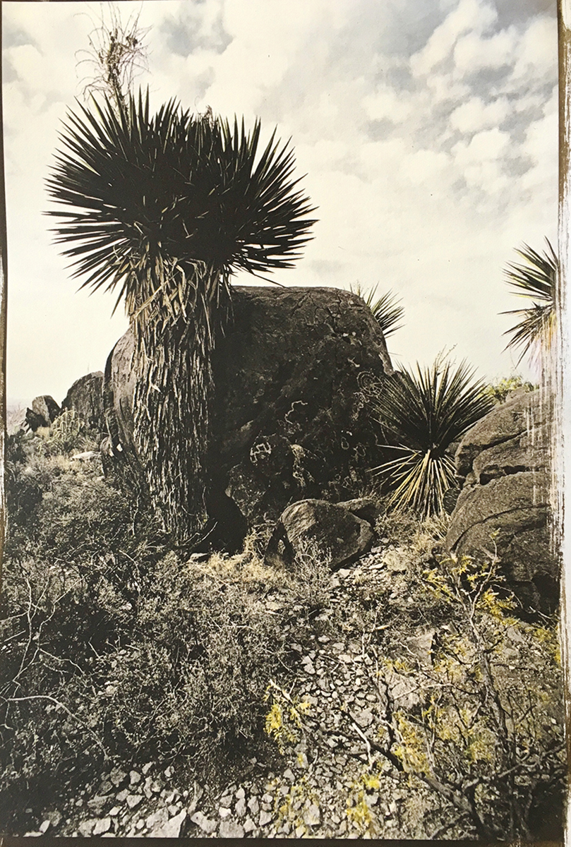 Yucca Rock Petroglyphs