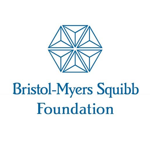 BMSF-blue-logo.jpg
