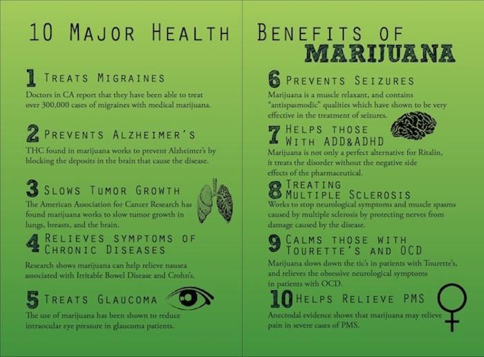 cannabis3.jpg