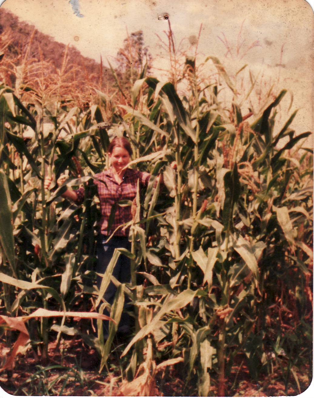 Jackie at 21 among the maize; first crop in the valley.JPG
