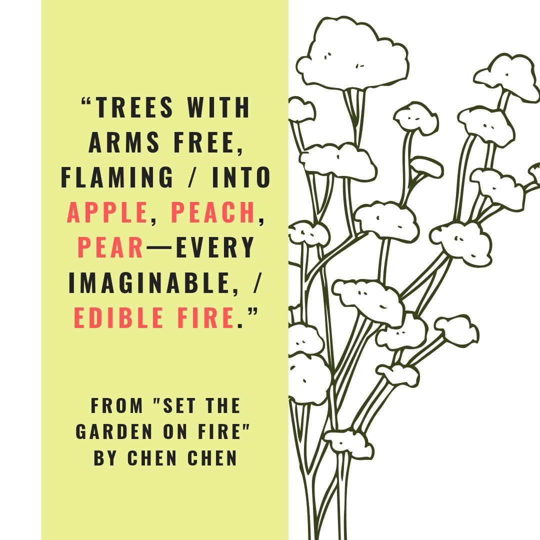 set the garden on fire excerpt graphic.JPG