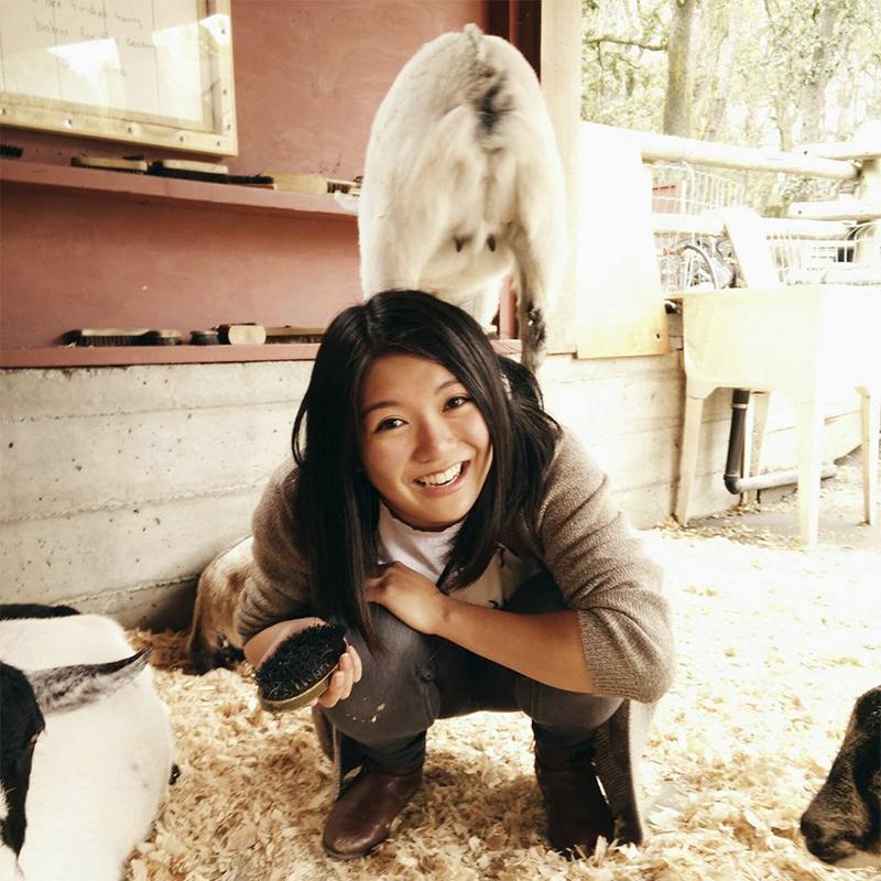 Edna Ng   , Transitional Mental Health Worker