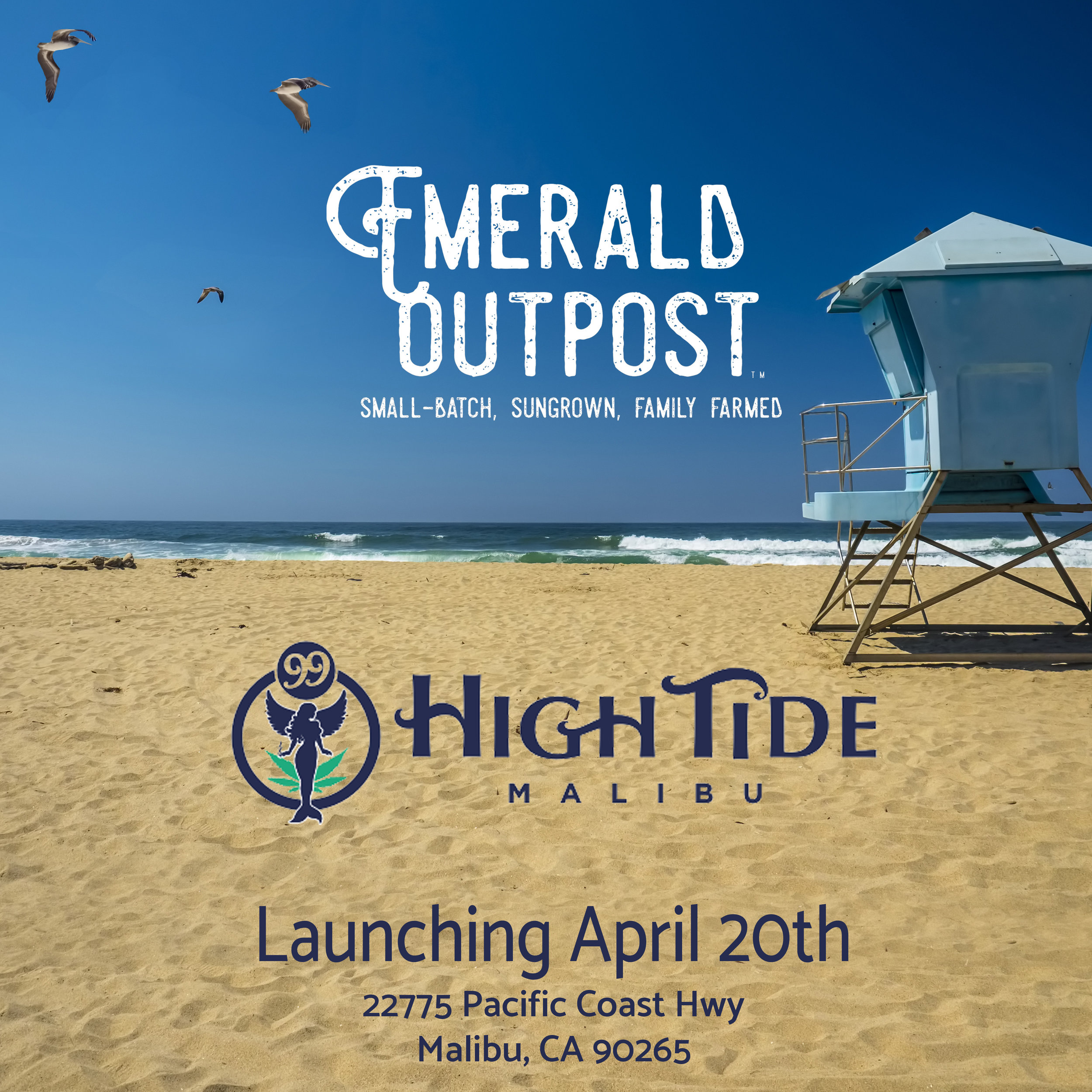 Emerald Outpost at 99 High Tide.JPG