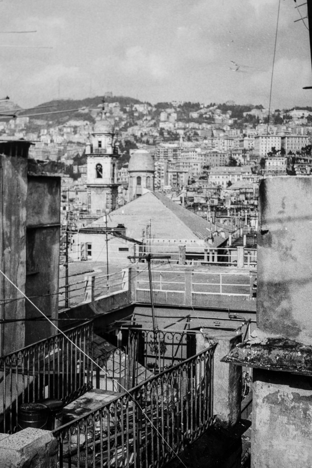 Genova - Genova per noiCon quella faccia un po'cosìQuell'espressione un po'cosìChe abbiamo noi prima d'andare a GenovaE ogni volta ci chiediamoSe quel posto dove andiamoNon c'inghiotte, e non torniamo piùEppur parenti siamo in po'Di quella gente che c'è lìChe come noi è forse un po' selvatica maLa paura che ci fa quel mare scuroE che si muovo anche di notteNon sta fermo maiGenova per noiChe stiamo in fondo alla campagnaE abbiamo il sole in piazza rare volteE il resto è pioggia che ci bagnaGenova, dicevo, e un'idea come un'altraMa quella faccia un po'cosìQuell'espressione un po'cosìChe abbiamo noiMentre guardiamo GenovaEd ogni volta l'annusiamoE circospetti ci muoviamoUn po'randagi ci sentiamo noiMacaia, scimmia di luce e di folliaFoschia, pesci,…Paolo Conte