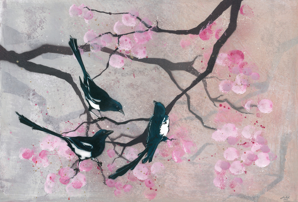 Magpies in Spring