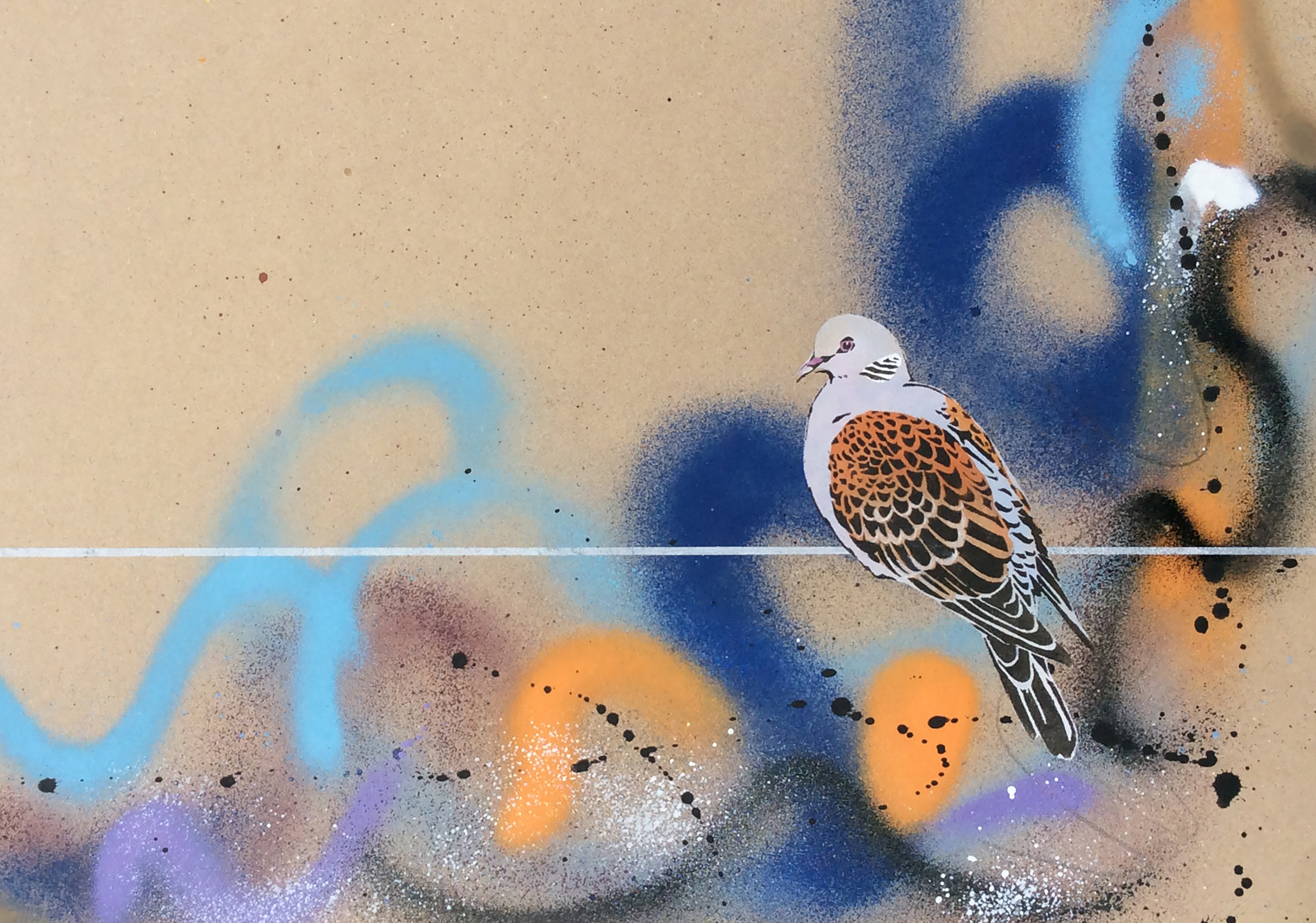 Turtle Dove on a wire
