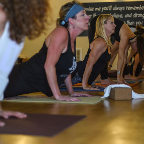 "Hot Vinyasa - A dynamic system of practicing asana, integrating breath and movement in a heated room. Sun salutations are an integral feature of the class, with each class being a diverse mixture of asanas. This is a physically challenging class, practiced in the ""hot room"" (95-100 degrees), that ends with deep relaxation."