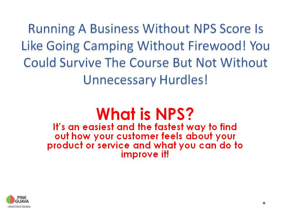 NPSfor small business -2.jpg