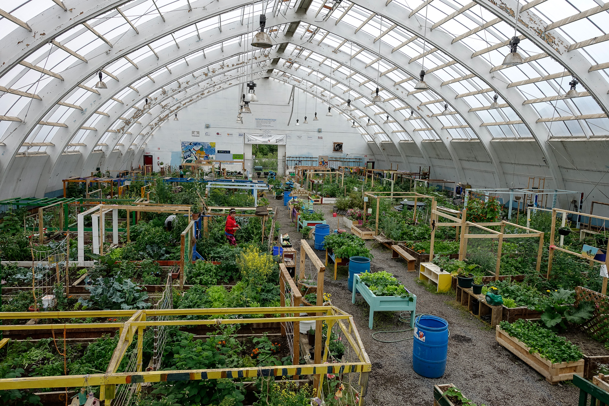 INUVIK COMMUNITY GREENHOUSE. FORMERLY THE SITE OF AN ICE HOCKEY ARENA, THE BUILDING NOW CONTAINS RESIDENTS' ALLOTMENTS.