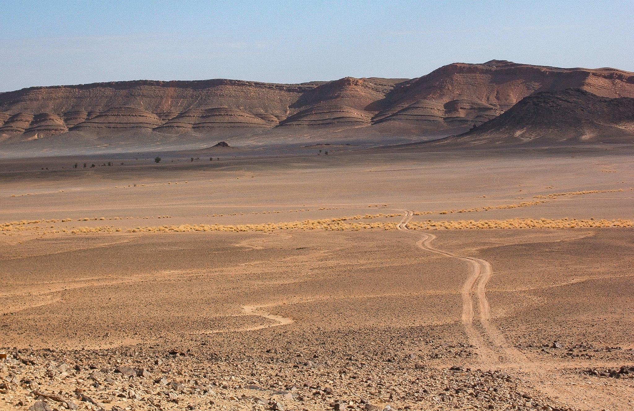INTO THE DESERT.