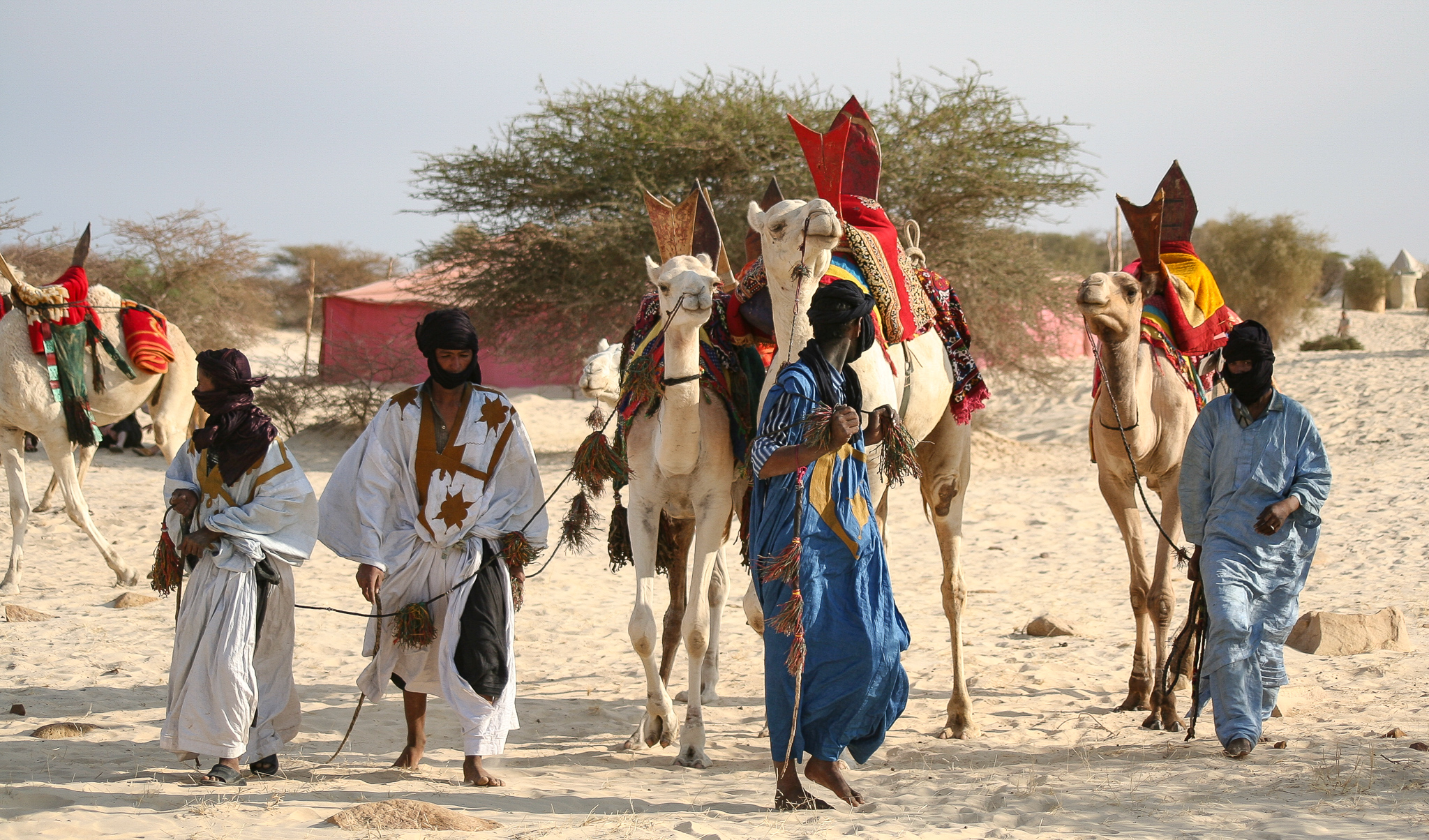 PARTICIPANTS ARRIVE FOR THE FESTIVAL FROM ALL CORNERS OF THE DESERT.