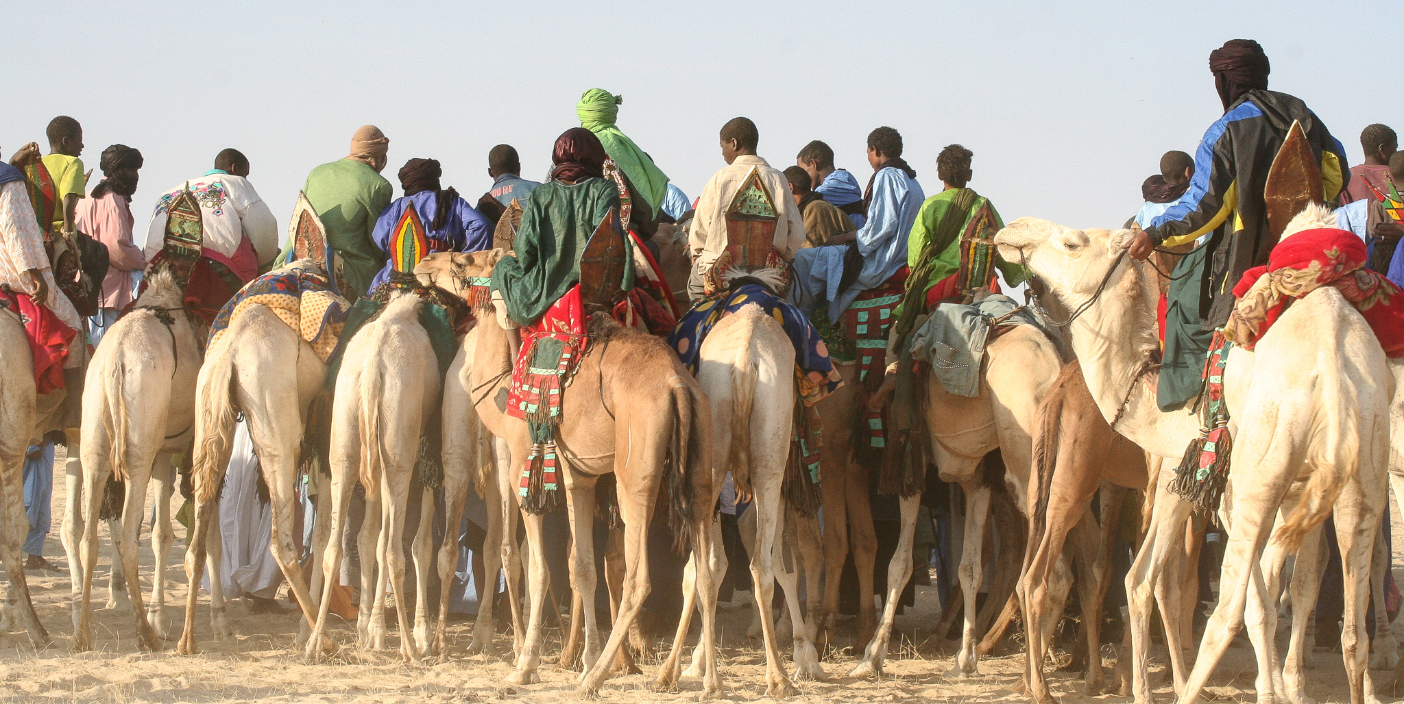 GATHERING FOR THE START OF A CAMEL RACE. VARIOUS EVENTS ARE HELD DURING THE DAY, THE NIGHT BEING RESERVED FOR MUSIC. BY EARLY 2012, THIS WHOLE REGION HAD FALLEN UNDER THE CONTROL OF AQIM (Al-QAEDA IN THE ISLAMIC MAGHREB). AND THE MUSIC FINALLY STOPPED.
