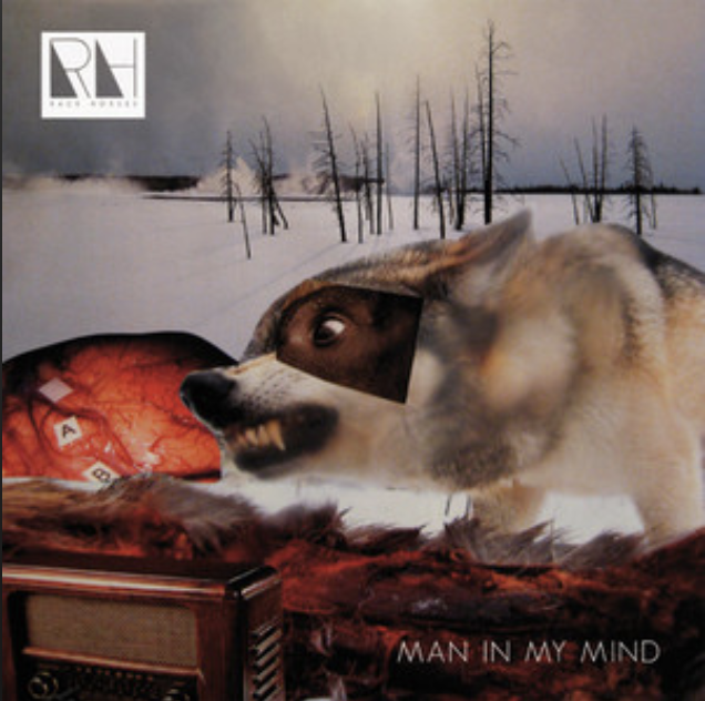 Luke Haines - Man In My Mind EP.png