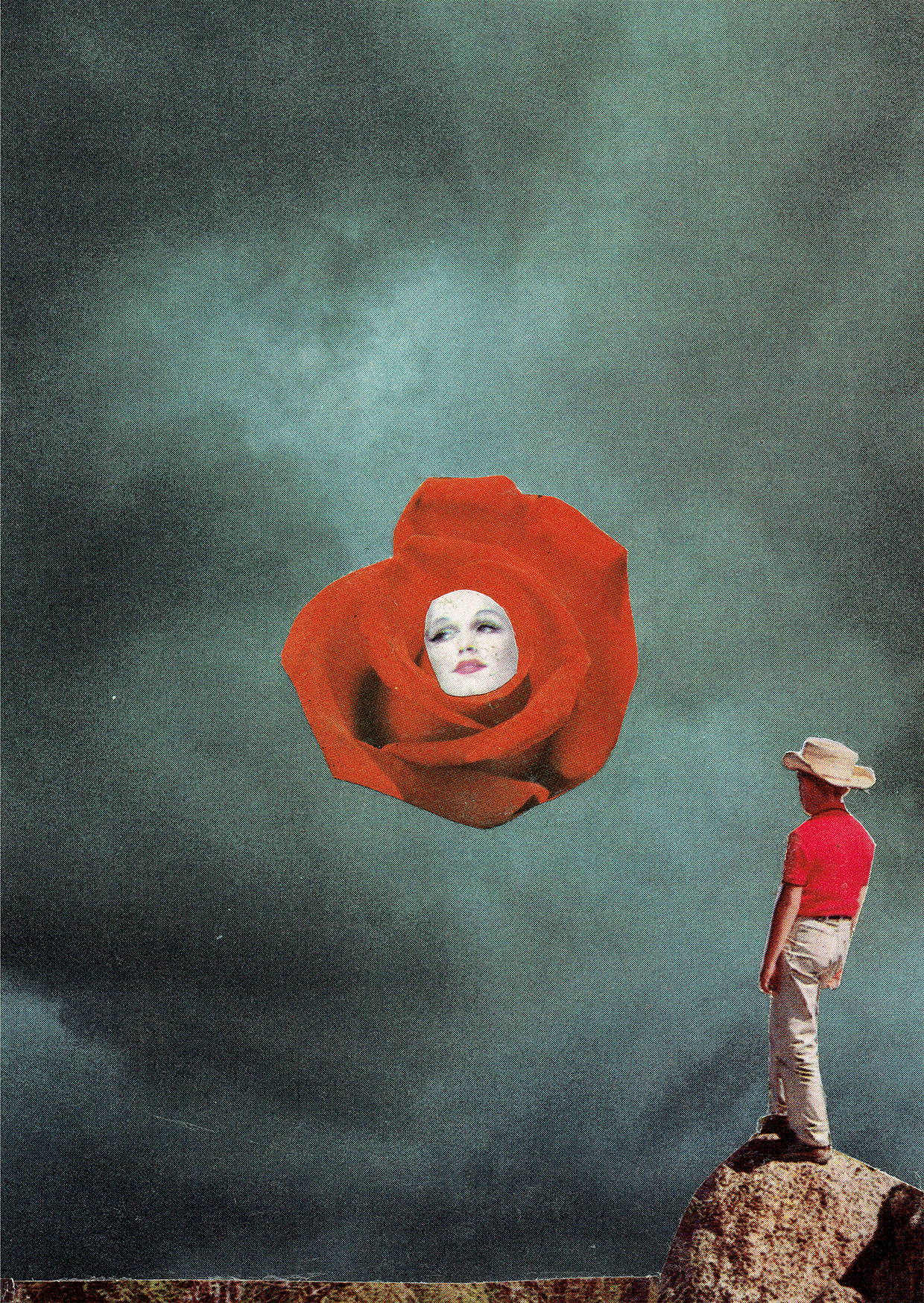 Steven Quinn - Desert Rose.jpg