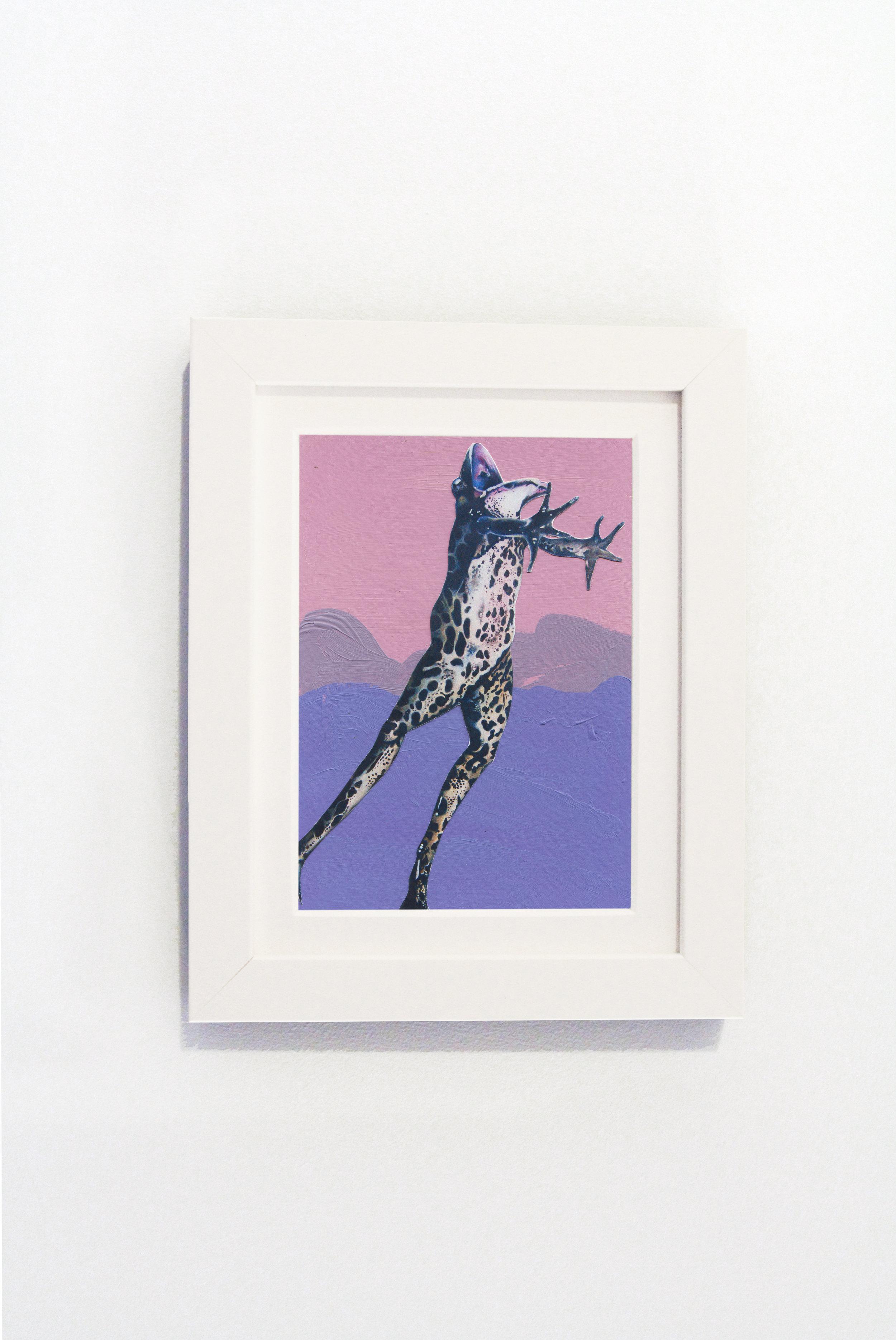Purple Frog White Frame.jpg