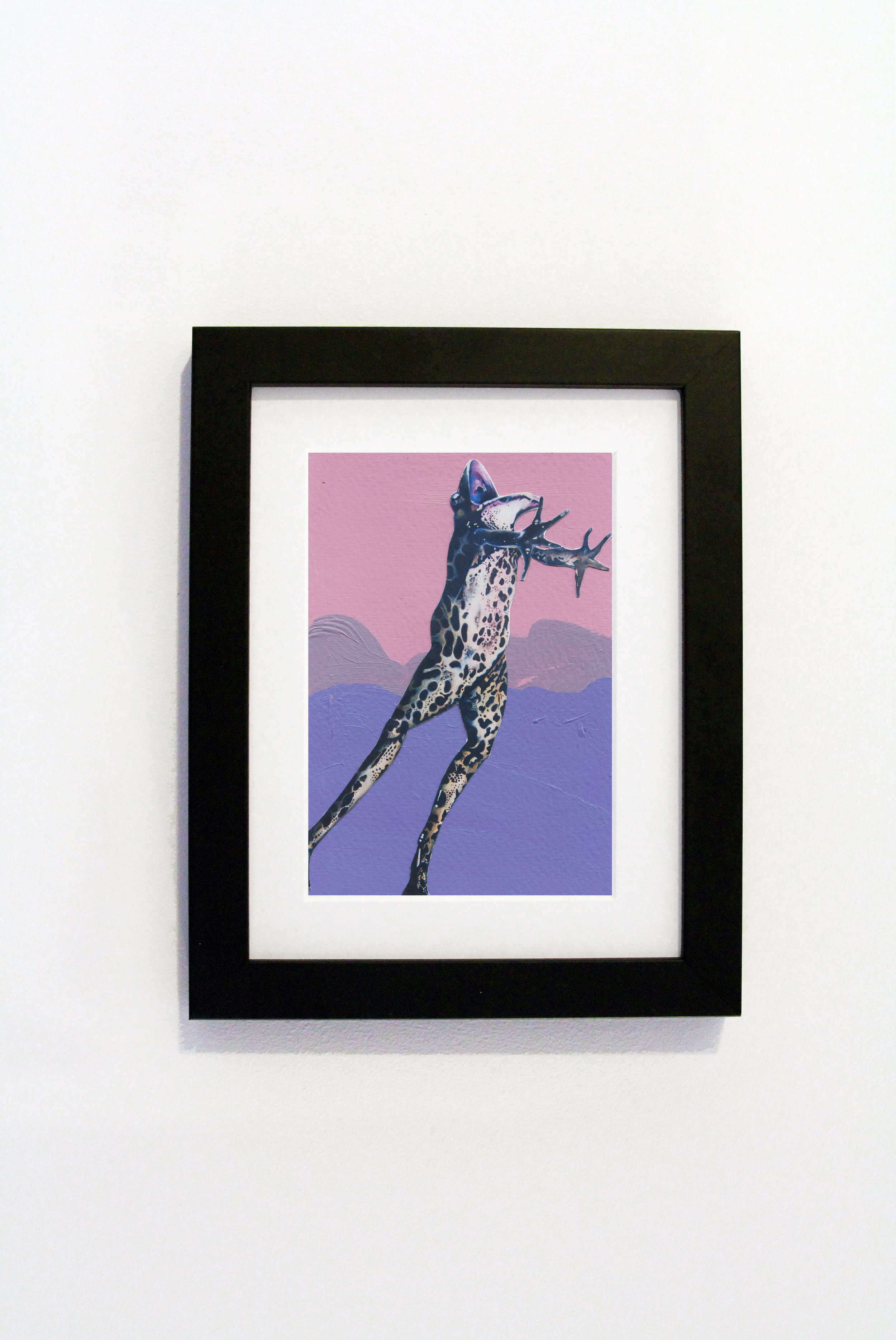 Purple Frog Black Frame.jpg