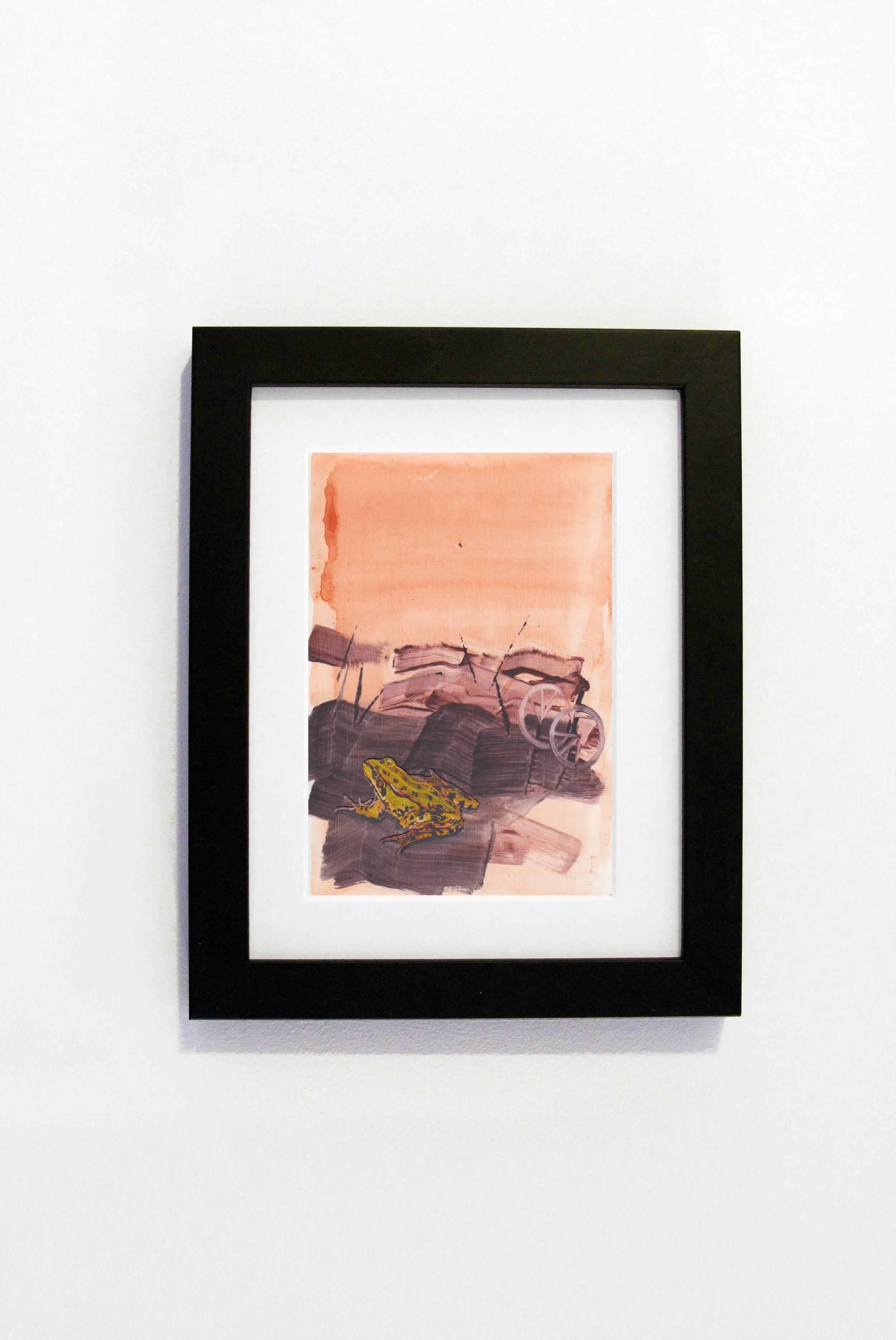 Pink Frog Black Frame.jpg