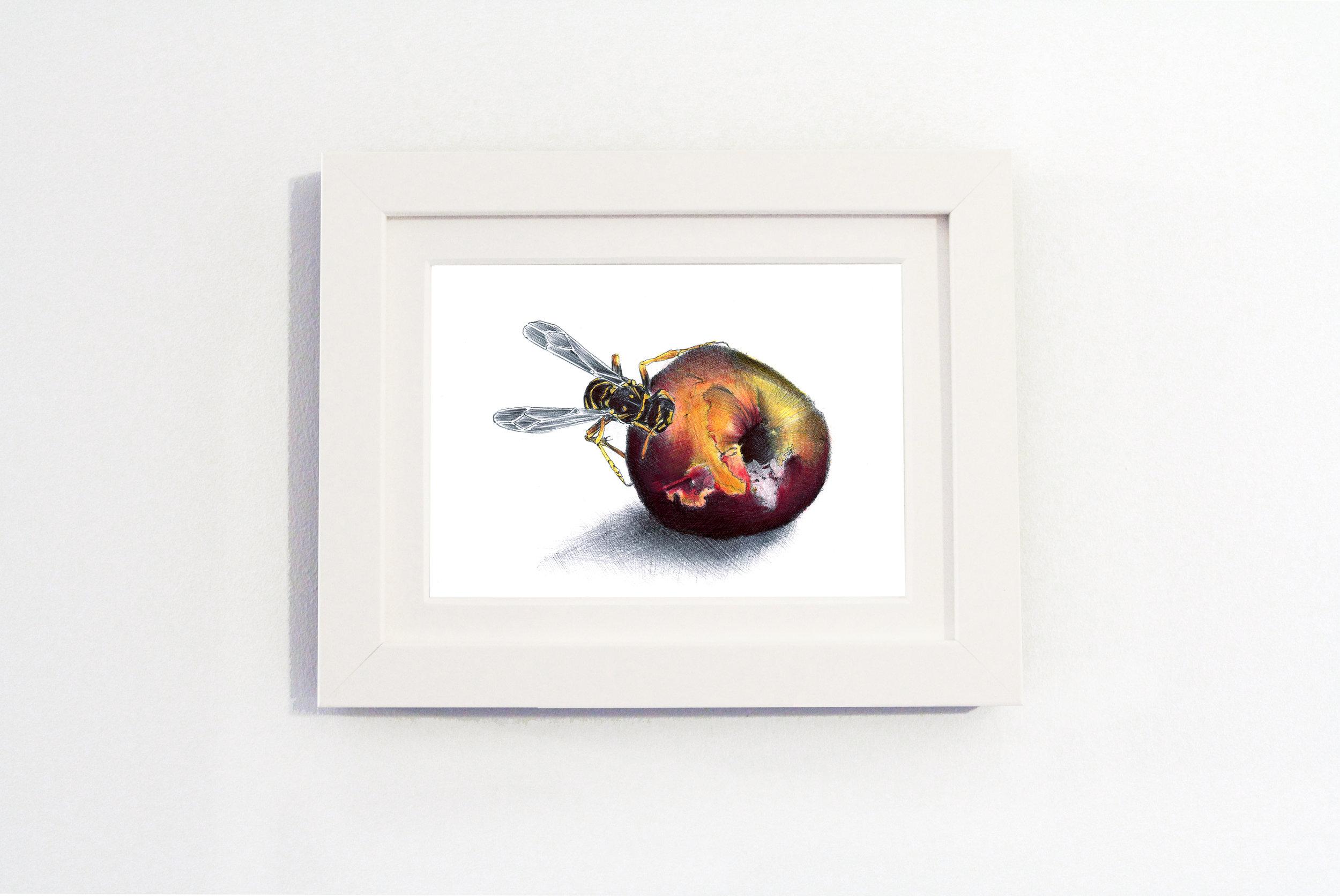 Nature Peach White frame.jpg