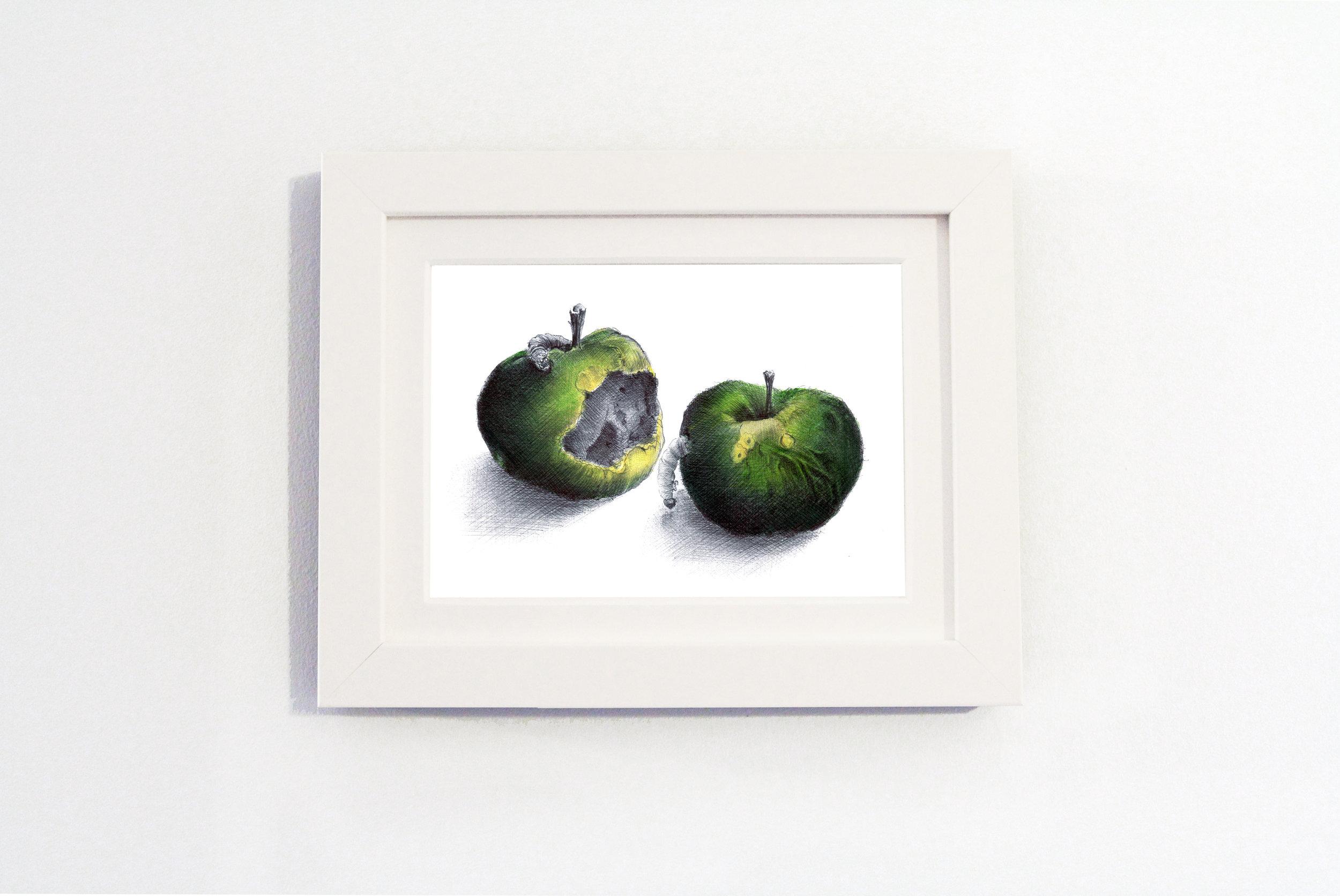 Apple White frame2.jpg