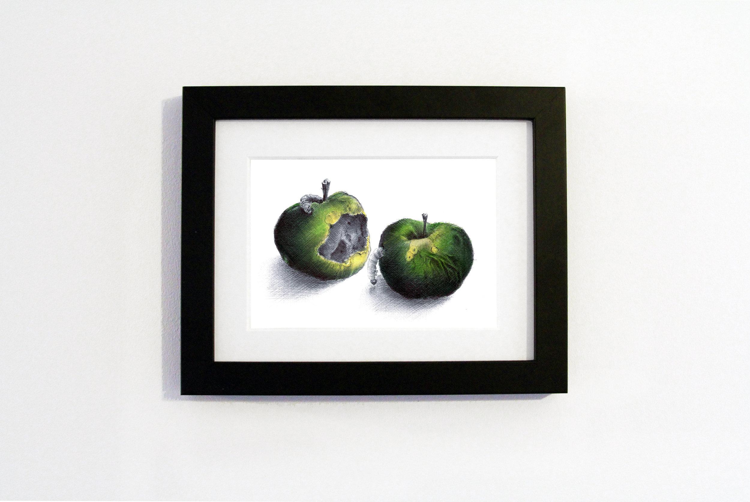Apple White frame.jpg