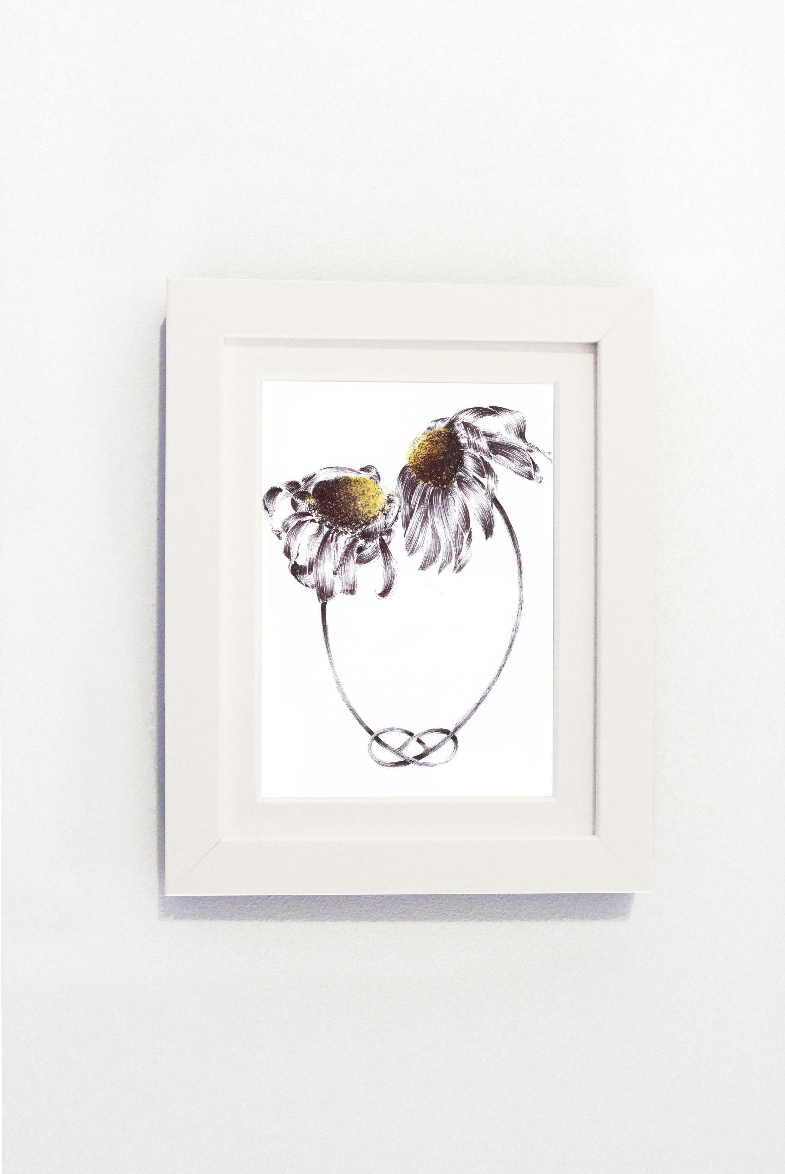 Daisies White Frame.jpg