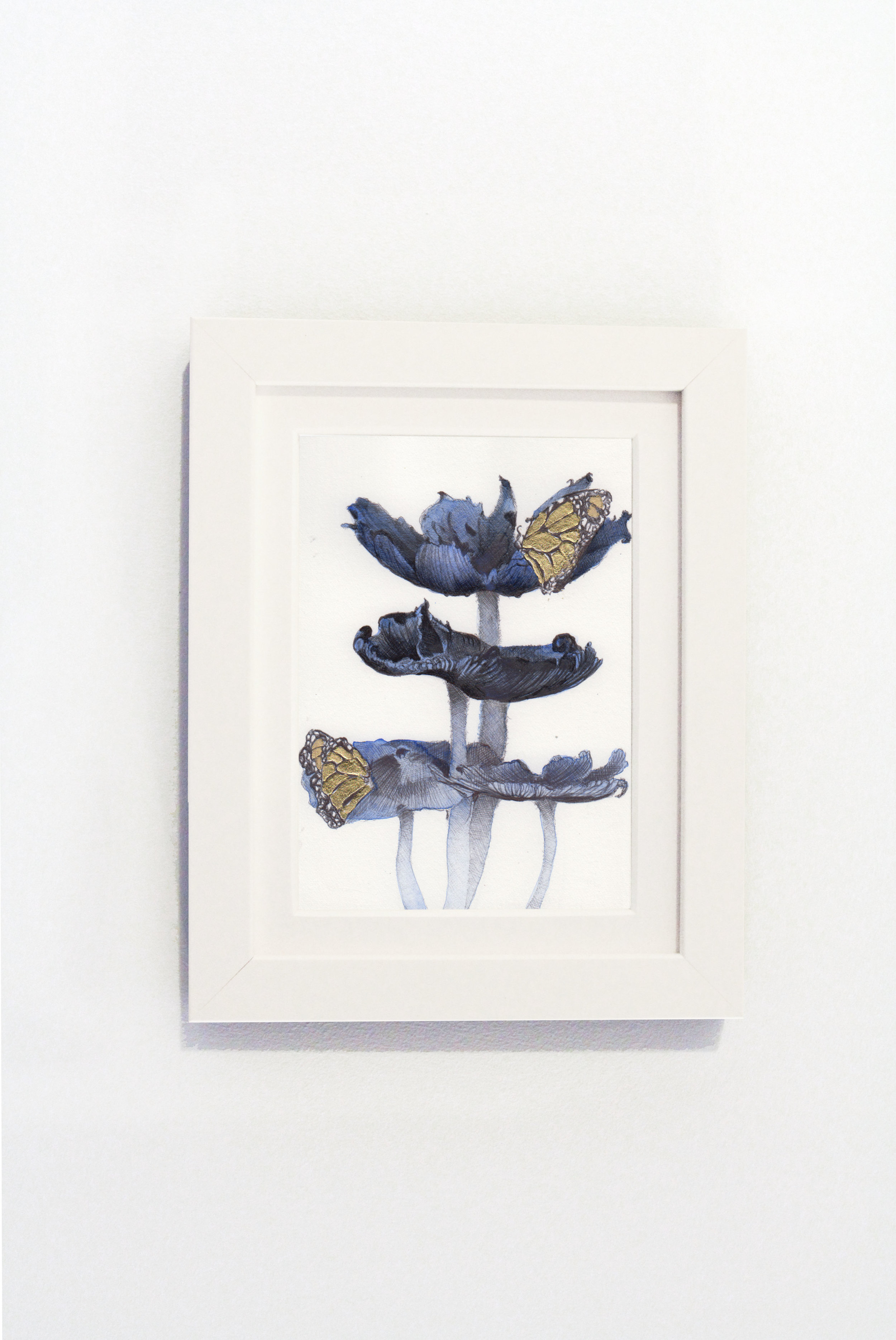 Mushrooms Black Frame.jpg