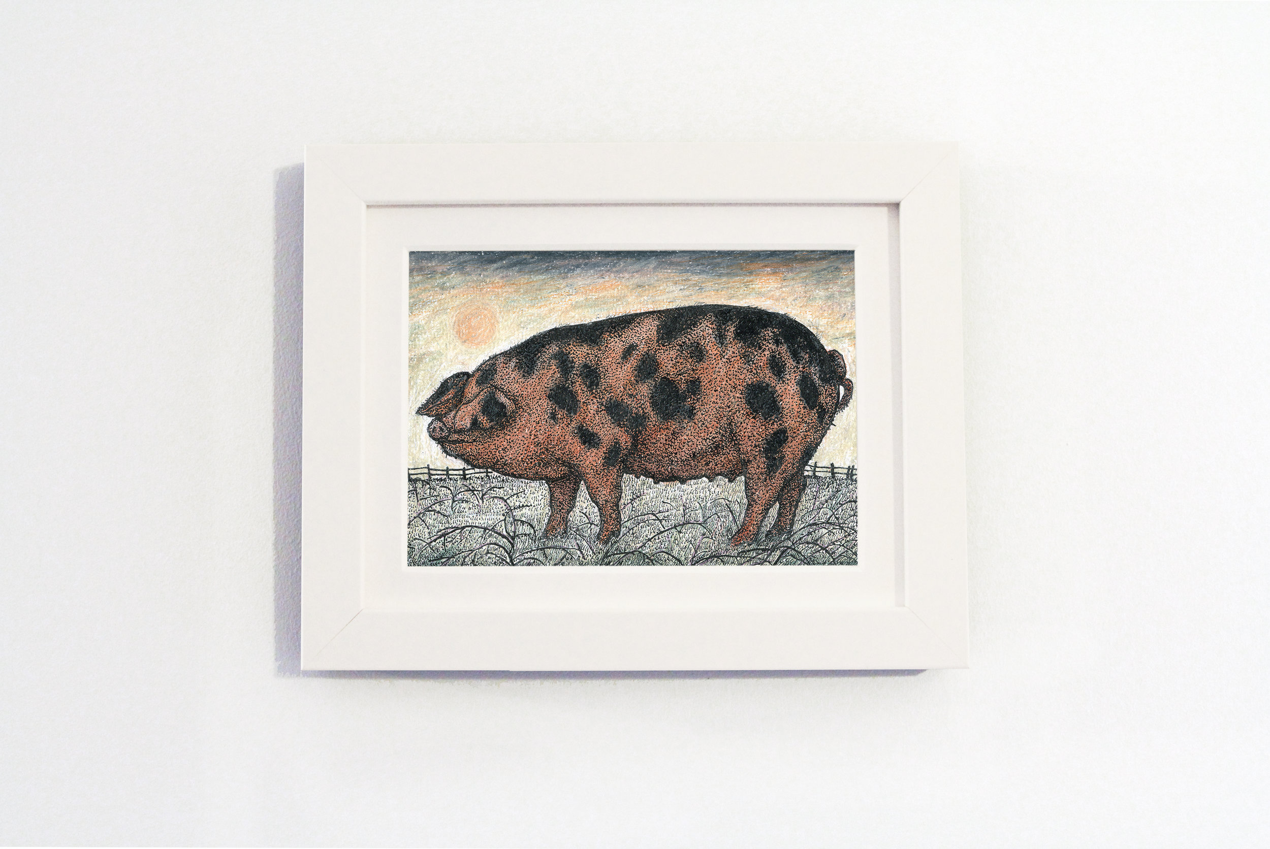 oxford sandy and black pig white frame.jpg