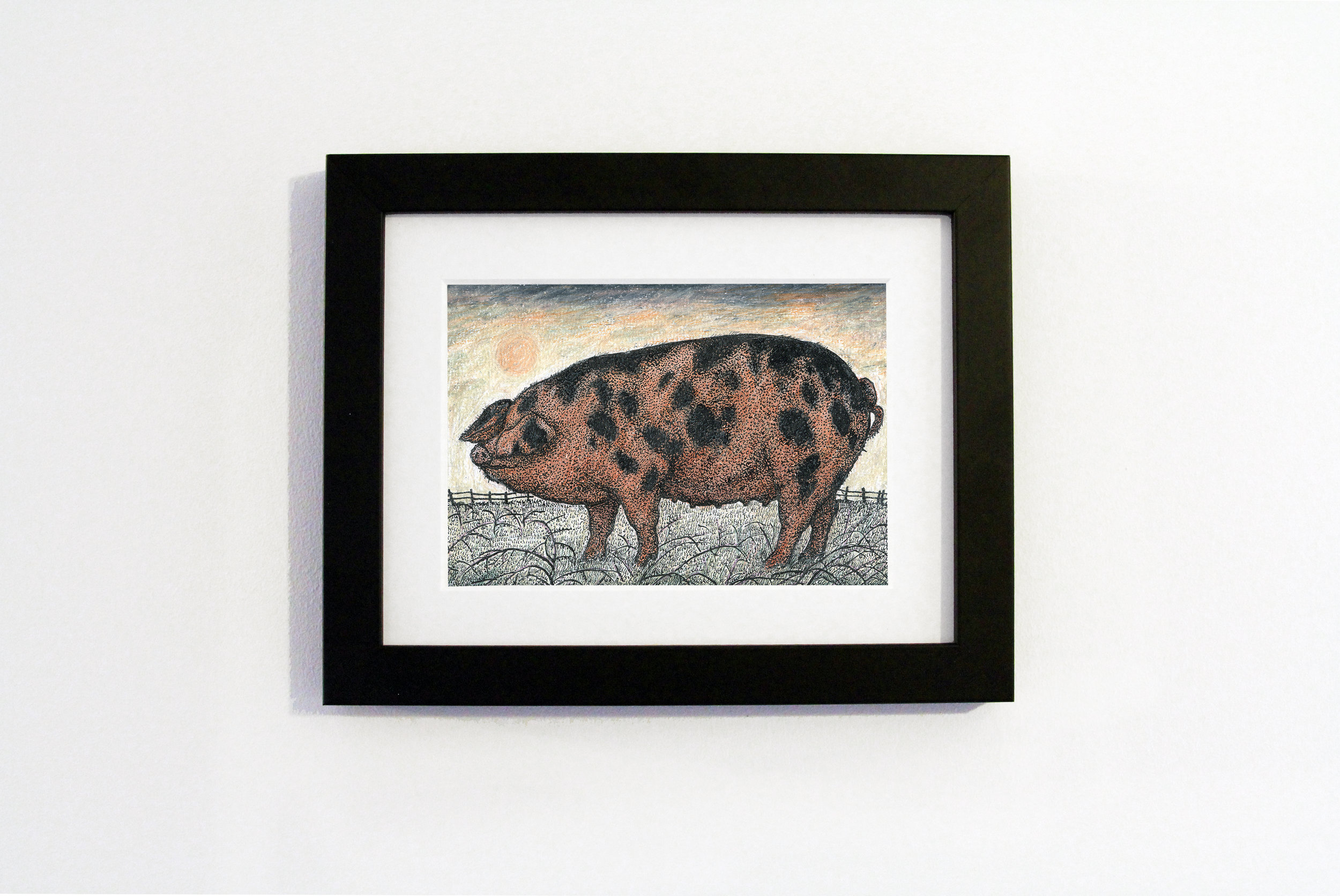 oxford sandy and black pig black frame.jpg