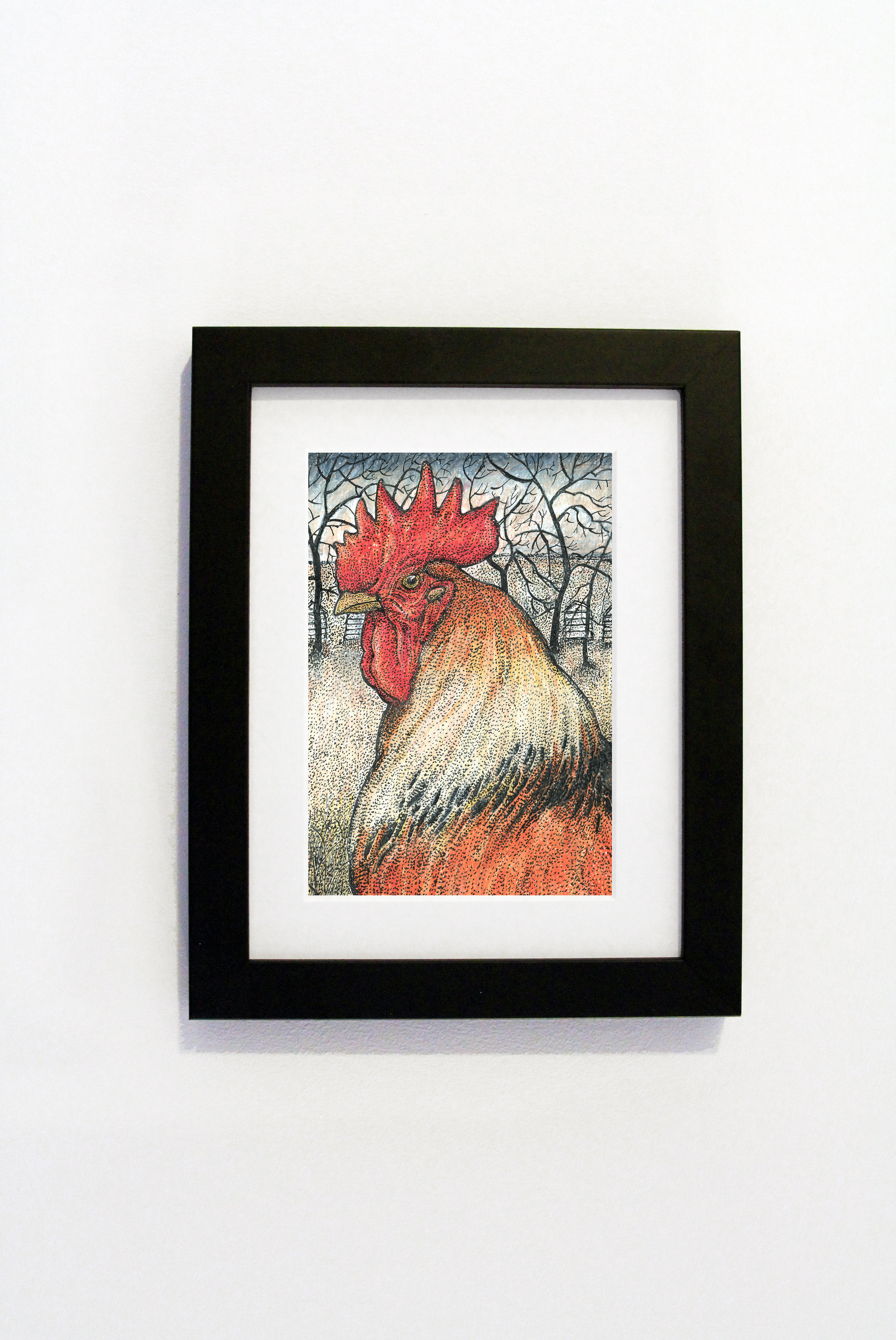 cockerel black frame.jpg