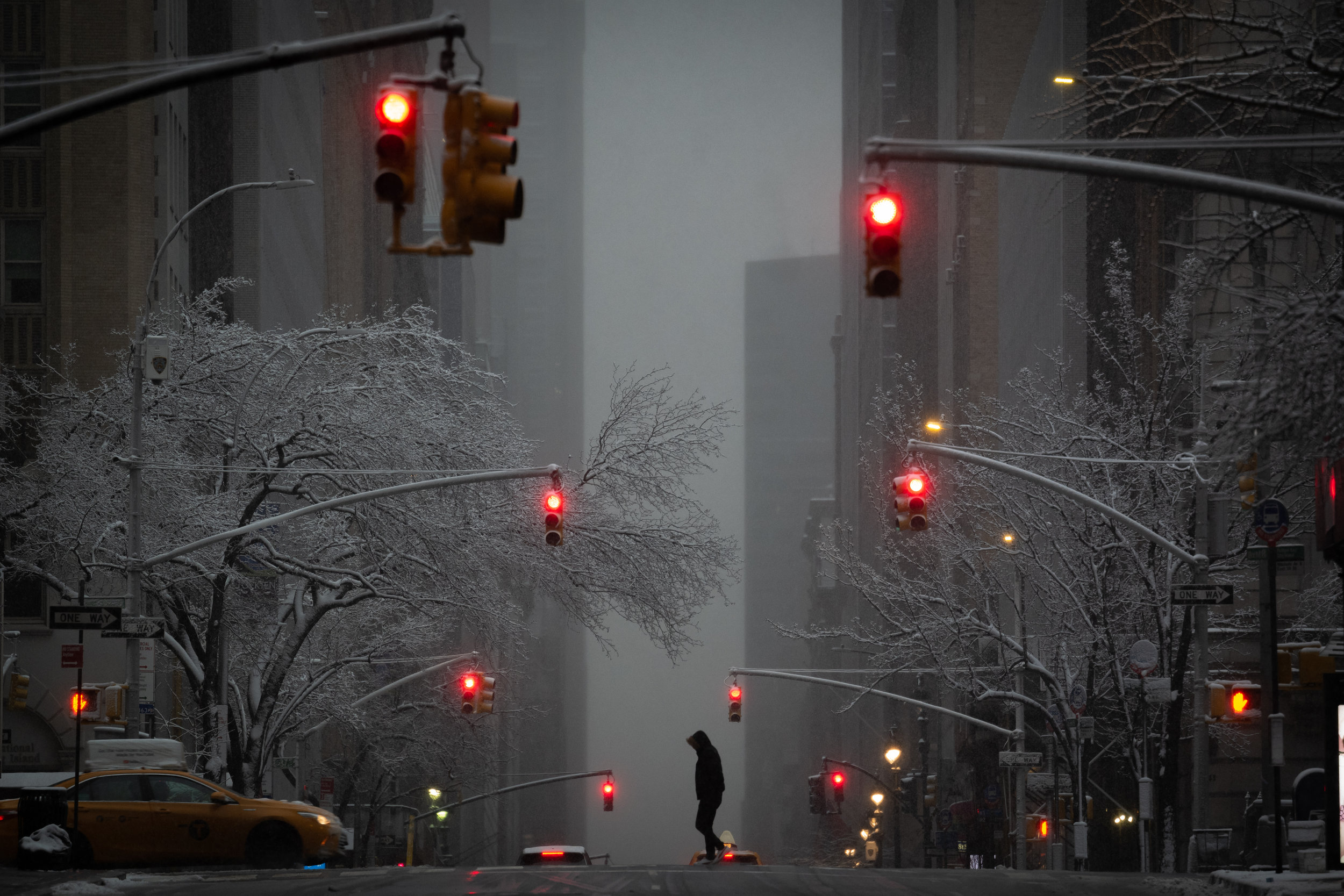 Lot 587 Snow on Madison Avenue - Photograph