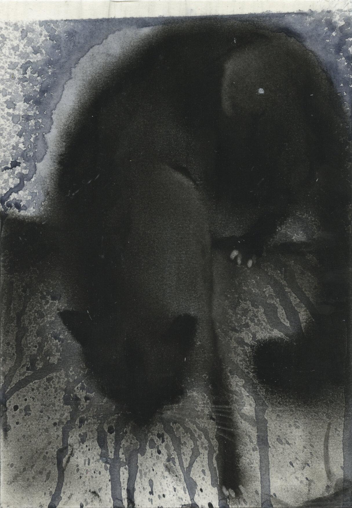 186. Black Cat II.jpg