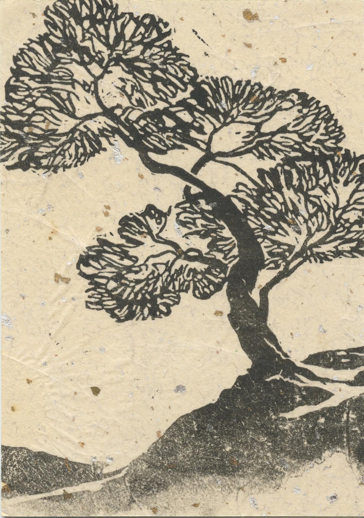 617. Japanese Tree.jpg