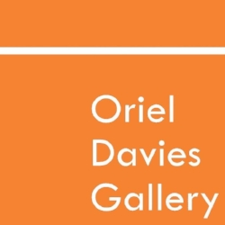 Oriel Davies Gallery.jpg