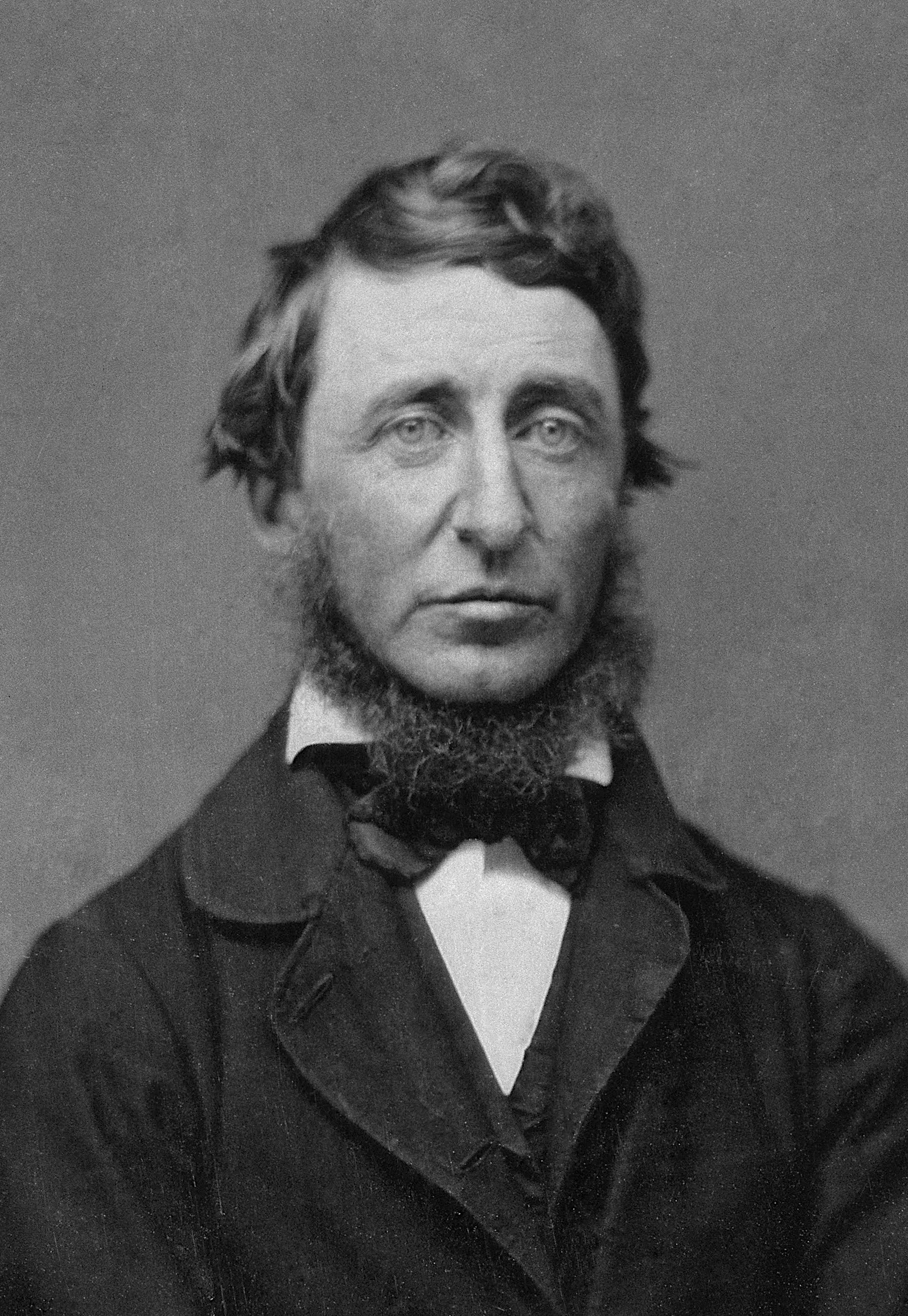 Henry David Thoreau (1817-1862), an 1856 daguerreotype by B. Maxham.